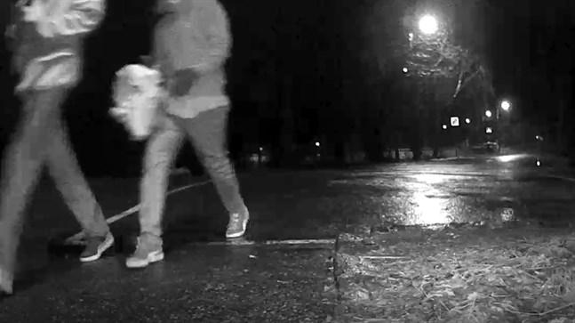 Skärmdump från övervakningskamerans video.