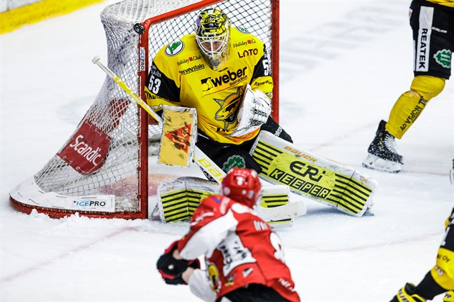 Niclas Westerholm i SaiPas mål höll sin fjärde nolla i FM-ligan.