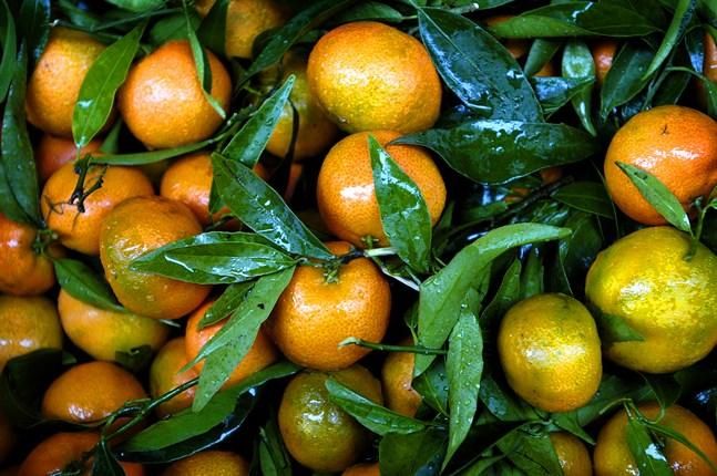 Klorpyrifos används i bekämpningsmedel inom jordbruket i en del länder. Nu blir det förbjudet i hela EU. Arkivbild.