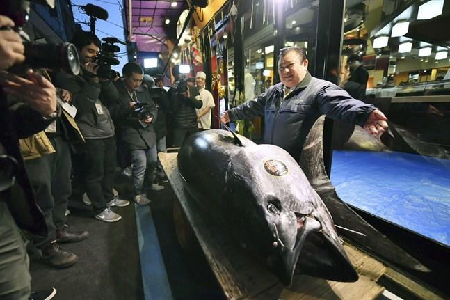 Restaurangägaren Kiyoshi Kimura poserar med den tonfisk han ropade hem under fjolårets nyårsauktion. Arkivbild.