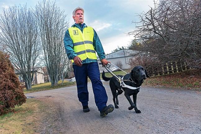 Bengt Ahlvik har fått en ny ledarhund. Silmu är två år och nyutbildad för sitt arbete.