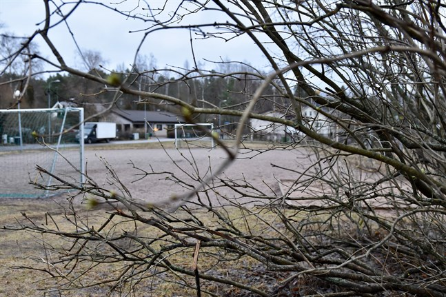 Det exceptionellt varma vädret har fått syrenbuskarna att knoppas i Helsingfors där Meteorologiska institutets väderstation på Malms flygplats uppmätte en temperatur på 7,8 grader Celsius på onsdagen.