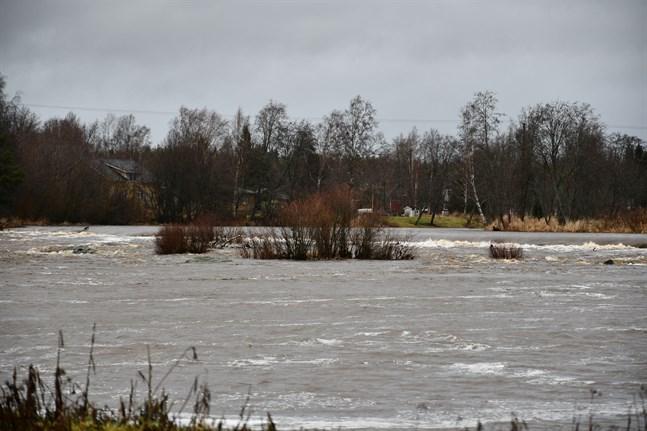 Så här såg Lappfjärds å ut i mitten av januari. Även nu har vattnet stigit.