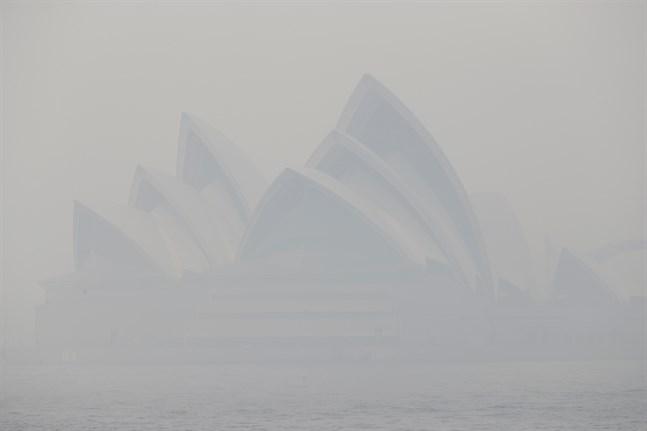 En vanligtvis eftertraktad vy höljd i brandrök – Operahuset i Sydney, fotograferat den 10 december i fjol.