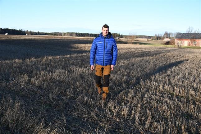 Då stubben är kvar är risken för urlakning mindre, konstaterar växtodlingsrådgivaren Kjell Nyström vid Proagria Lantbrukssällskapet.