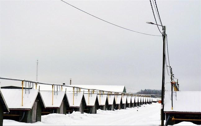 Företaget Pondorosas minkfarm i Ytterjeppo tömdes på djur i början av 2018. I fredags var konkursen ett faktum.