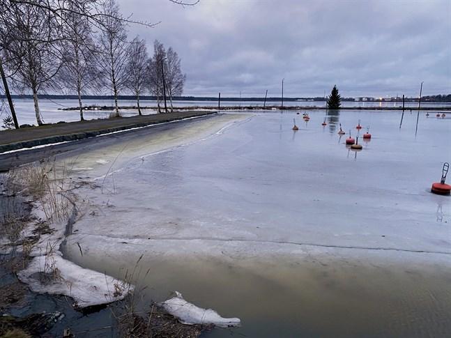 Den hårda sydliga vinden har medfört mycket högt vattenstånd i Kvarken. Bilden är tagen på måndagsmorgonen nedanför Kronomagasinet i Vasa.