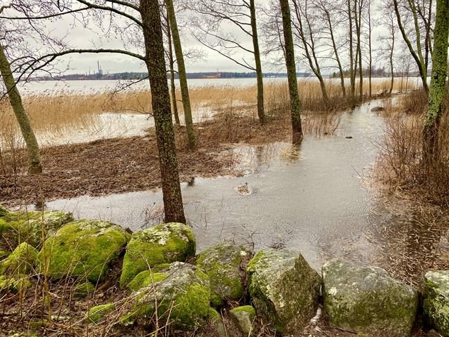 Klockan ett på söndagseftermiddagen var vattenståndet 100 cm över det normala. Bilden är tagen nedanför Vasa centralsjukhus.