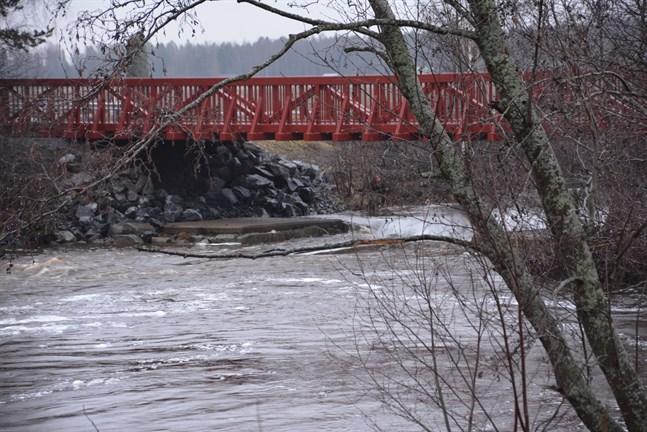 Vattennivån i Närpes å vid Finby bro var på fredagseftermiddagen betydligt lägre än i början av veckan. Men nivån väntas stiga under veckoslutet.