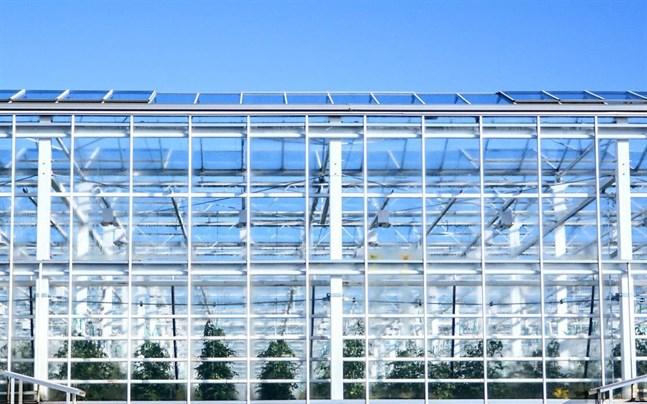 Covid-19 har drabbat ett par växthusföretag i Närpes via anställda den senaste tiden.