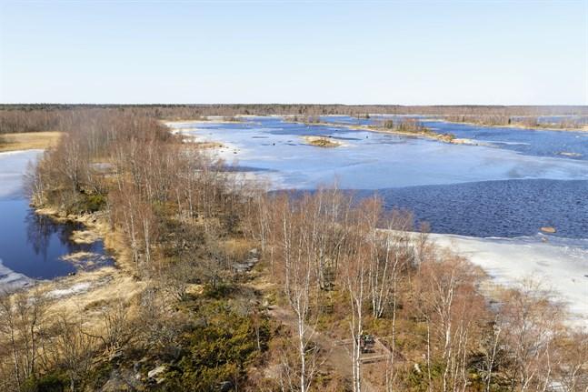 Planerna på ett naturskyddsområde i Kvarken försenas nu på grund av coronaepidemin.