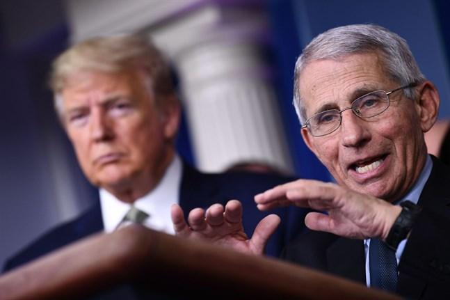 Doktor Anthony Fauci, som ingår i president Donald Trumps coronastab, varnar för att dödstalet på grund av pandemin kan bli mycket högt i USA.