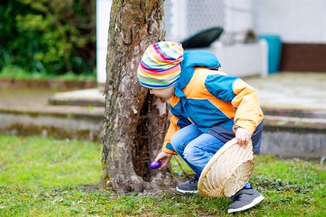 Påskäggsjakt där hemma kan ersätta påskhäxornas dörrknackning i år. Man kan gömma äggen både inne och ute och använda olika slags ledtrådar.