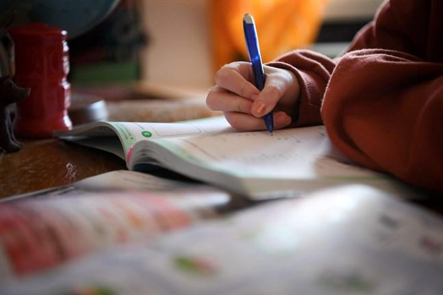 Distansundervisningen fungerar bra, om än den är påfrestande för många.