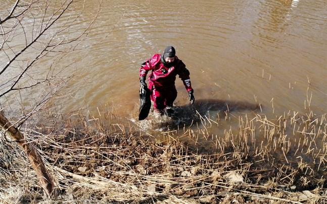 En dykare från räddningsväsendet kunde inte hitta spår av att någon människa skulle ha hamnat i Sundet i samband med att fyrhjulingen hittades.