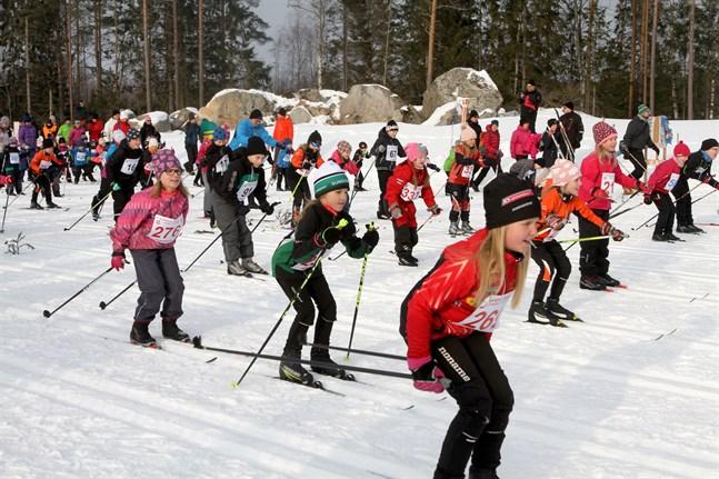 Den finländska längdskidåkningen har fått en helhetsstrategi, från barnidrott till elitnivå. Bilden är från Barnens Vasalopp i Larsmo.