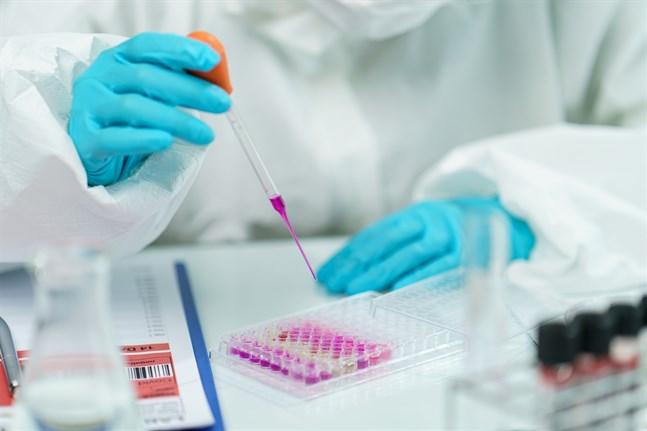 I Finland pågår två separata vaccinprojekt vars syfte är att utveckla ett coronavaccin.