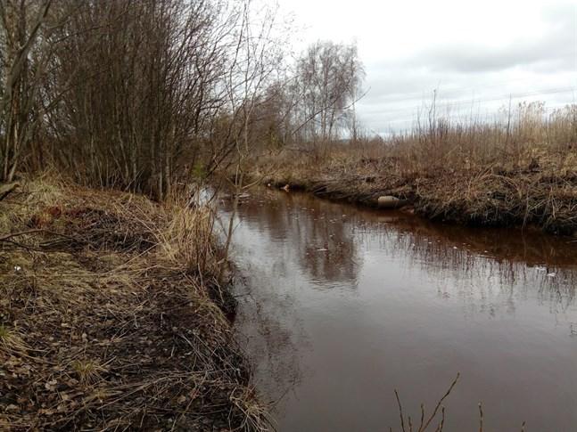 Kvaliteten på sundvattnet ska förbättras genom att anlägga våtmark i det övre loppet.