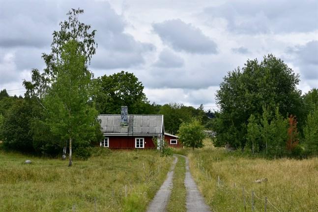 Forskarna observerade rikligt med fästingar på Själö i Åbolands skärgård.