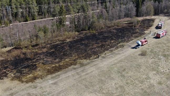 Markbranden uppstod alldeles intill ett skogsområde.