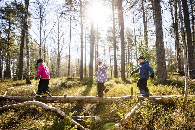 Linnéa Lassander, Julia Lundström, Kevin Korsström balanserar på en trädstam.
