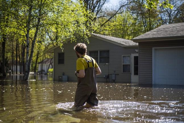 En boende i Midland, Michigan, vadar genom vattenmassorna för att nå sitt hem.