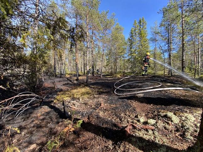 Området som brann var ungefär 20 gånger 30 meter stort.