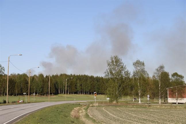 Vinden för röken mot sydväst. Rökmoln syns tiotals kilometer från brandplatsen.