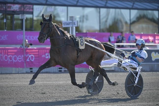 Propulsion med Örjan Kihlström i sulkyn tog sig till final i Elitloppet trots tufft utgångsläge.
