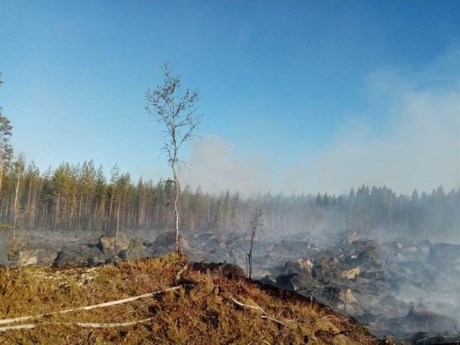 Femton enheter var på plats för att släcka branden.