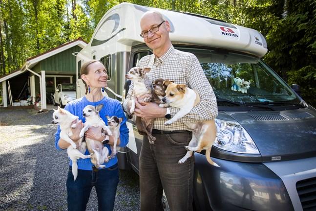 Heikki och Suvi-Sirkku Kaukoranta – även hon överläkare – tar ledigt efter en stressig vår. De har sex (!) hundar som alla är chihuahuor, och det är tur. Annars hade det blivit lite väl trångt.