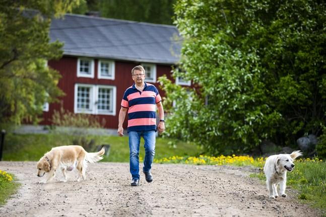 Rainer Bystedt är uppväxt här på gården i Kovik. Här på grusvägarna kring gården trivs han, med hundarna som alltid är i släptåg.