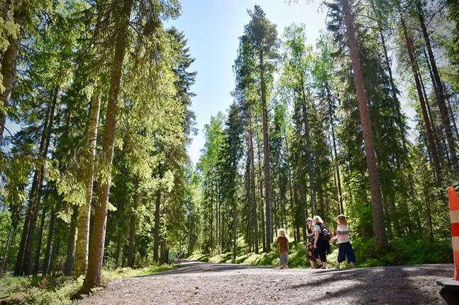 Fyra av fem finländare tycker att naturen är viktig eller väldigt viktig, uppger Miljöministeriet och Finlands miljöcentral.