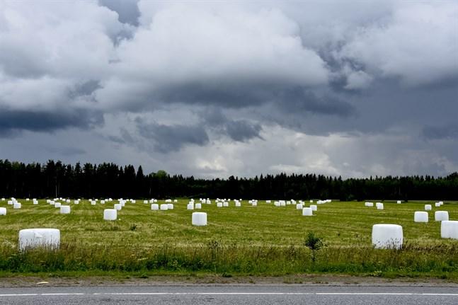 Ett mycket kraftigt lågtrycksområde rör sig över Finland under tisdagen, varnar Meteorologiska institutet.