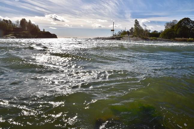 Havsvattentemperaturen varierar nu allt mellan omkring 12 grader i norr och 23 grader vid de sydliga kustområdena.