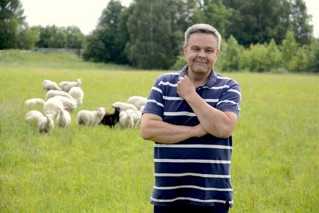 Anders Norrback är hemma på gården i Övermark för en tids semester från riksdagsarbetet.