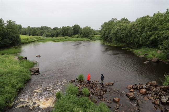 Det finns inget dåligt väder, bara dåliga kläder då man gillar att fiska.