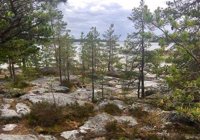 Om klipporna vid Fäboda arrenderas ut åt ett gäng företagare är de inte längre fria, skriver Lilian Kola. Bilden är från en plats där en glasigloo kunde placeras.