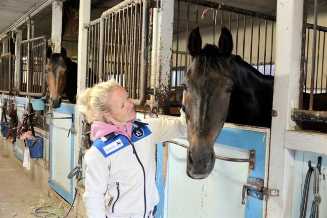 Det är hästarna som ger motivation och inspiration att ständigt vilja utvecklas för Tove.