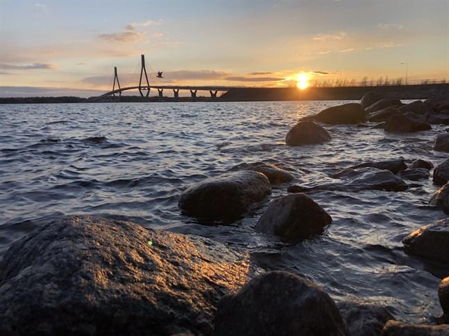 """Man har aldrig har sett så mycket folk vid Replotbron som förra sommaren , skriver Jukka Mäkynen och Ulf-Peter Ek som vill att värlsdarvet ska få större synlighet, """"allt för hela regionens väl""""."""