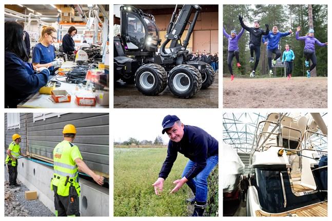 Crimppi, Logset, Team Nordic Trail, Heikius Hus, Caraway Finland och Linex-Boat är några av de företag som beviljats utvecklingsfinansiering från Business Finland.