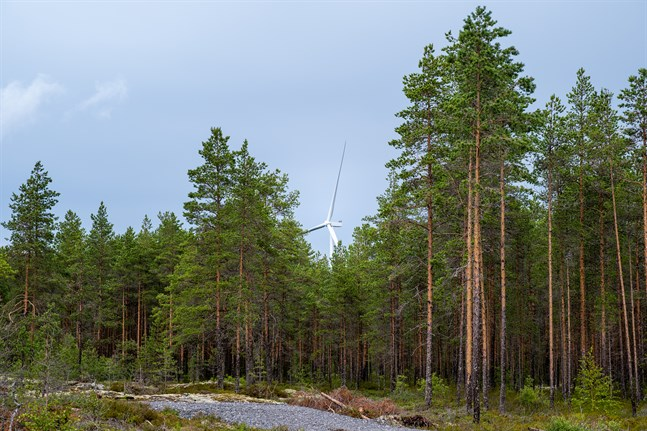Ett av vindkraftverken i Ribäcken.