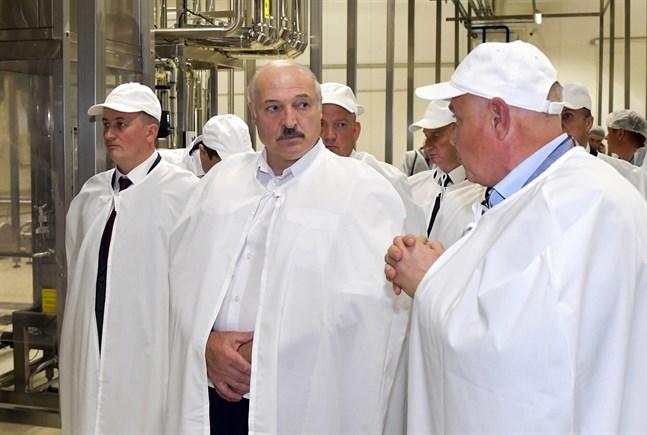 Belarus president Aleksandr Lukasjenko under ett besök vid en livsmedelsfabrik måndagen den 27 juli, dagen innan han medgav att han burit på coronasmittan.