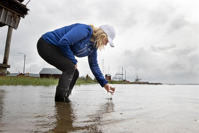 Under de tjugo år som Marika Nylund hållit ett extra noga öga på vattenkvaliteten i Replot har hon aldrig sett något liknande.