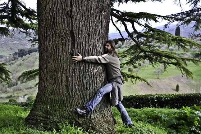 Nu kan vem som helst vara med och tävla i trädkramning.