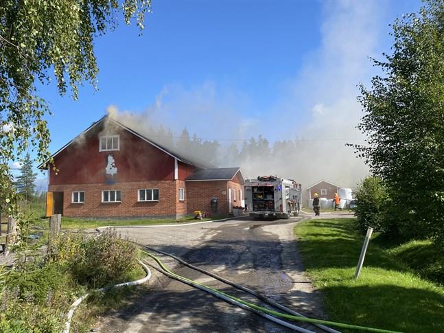 Branden orsakade kraftigt med rök  inuti stallet.