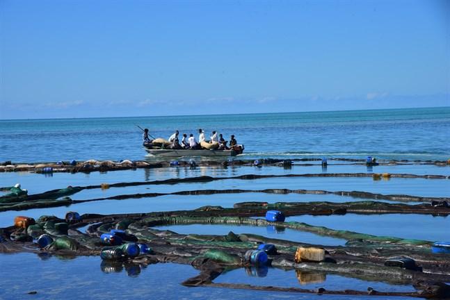 Mauritier sluter upp för att bistå i arbetet med att sanera kustremsan längs öns sydöstkust. Arkivbild.