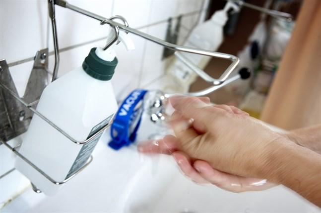 Tio tusen flaskor av fruktkonjaken Rakija ska användas för att desinfektera ett sjukhus i Krusevac, Serbien. Arkivbild.