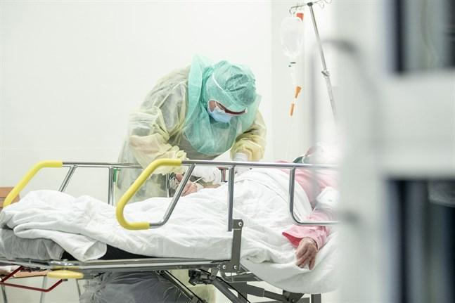 Sammanlagt har 8200 personer insjuknat i coronaviruset.