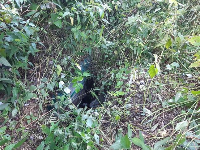 Mitt i brännässlorna fanns ett hål som Guy Djupsjöbacka föll ner i.